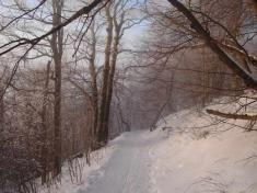 Milešovka v zimě